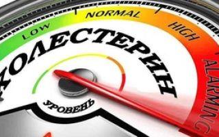 Причины повышения коэффициента атерогенности, лечение
